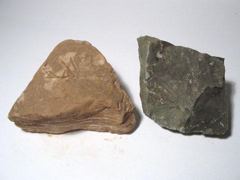 Rock - Index Page